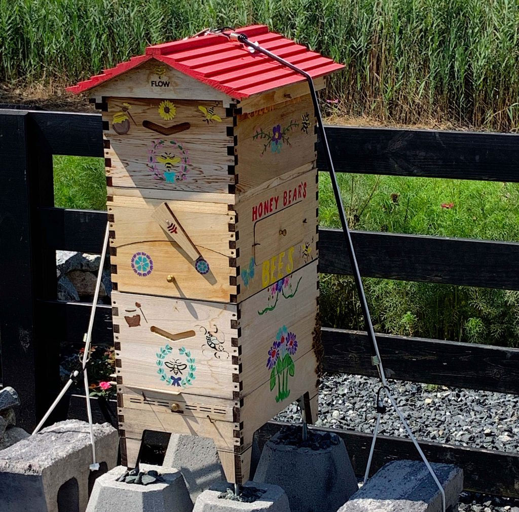 bees-1024x1010.jpg